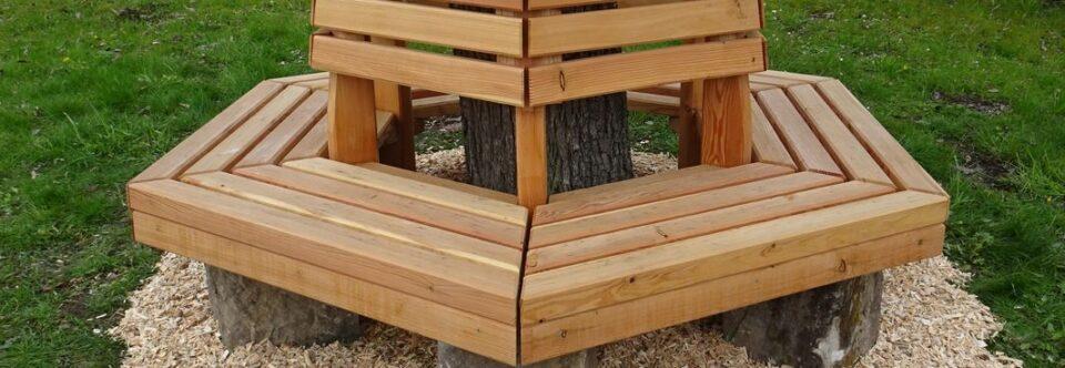 Vom Stammbrett zur Birnbaumbank
